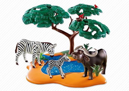 Buffalo with Zebras