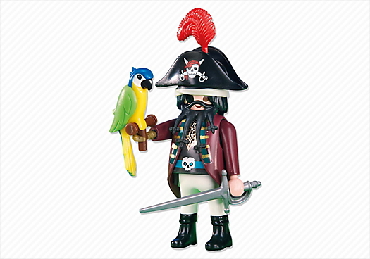Pirate Captain with Parrot