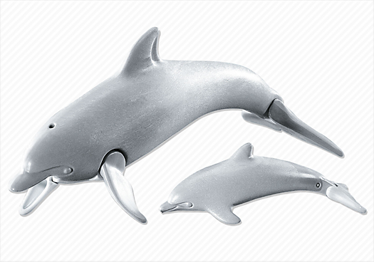 Dolphin with Calf
